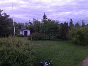 Gräsmattan framför huset 2013